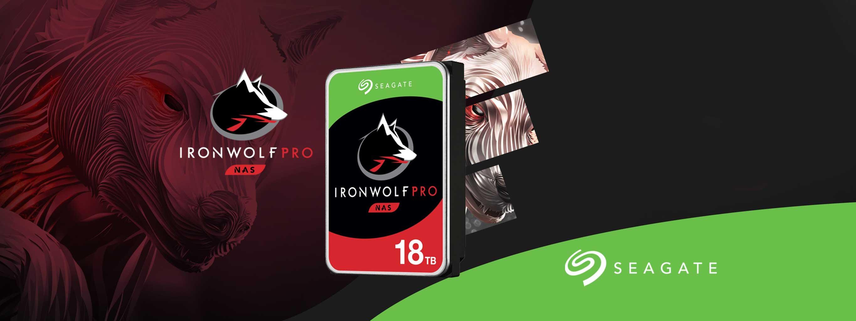 IronWolf Pro 18TB