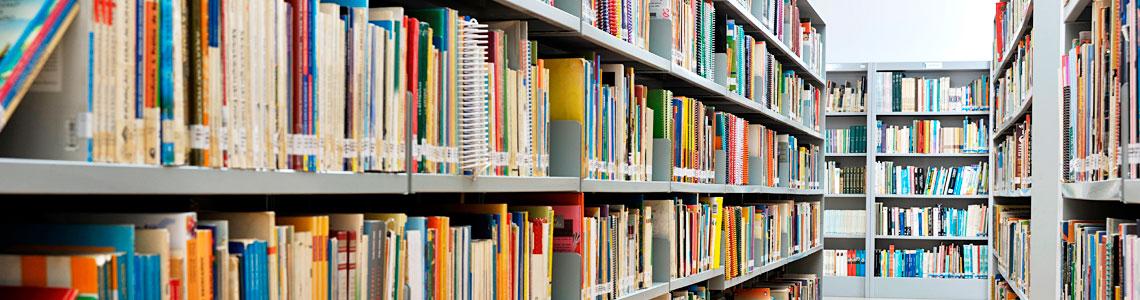 Como Câmeras de segurança podem beneficiar Bibliotecas Públicas