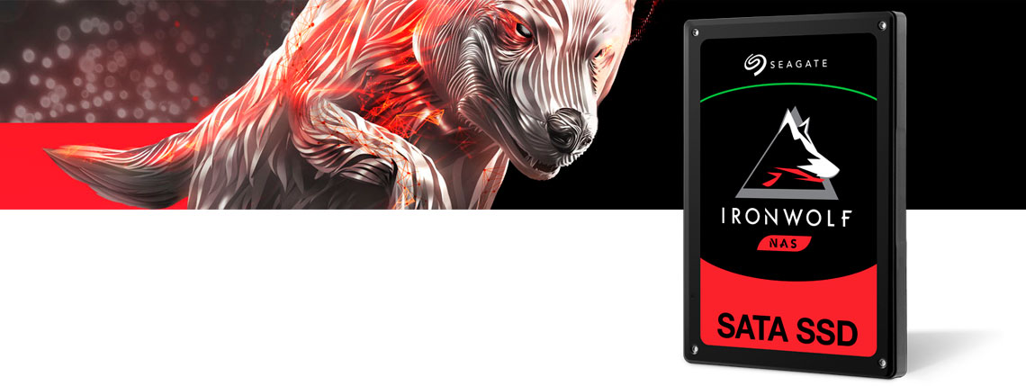 SSD Seagate Ironwolf NAS