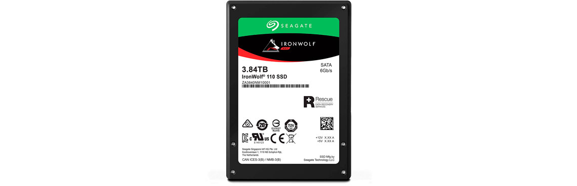SSD SATA, Ironwolf 110 3.84TB