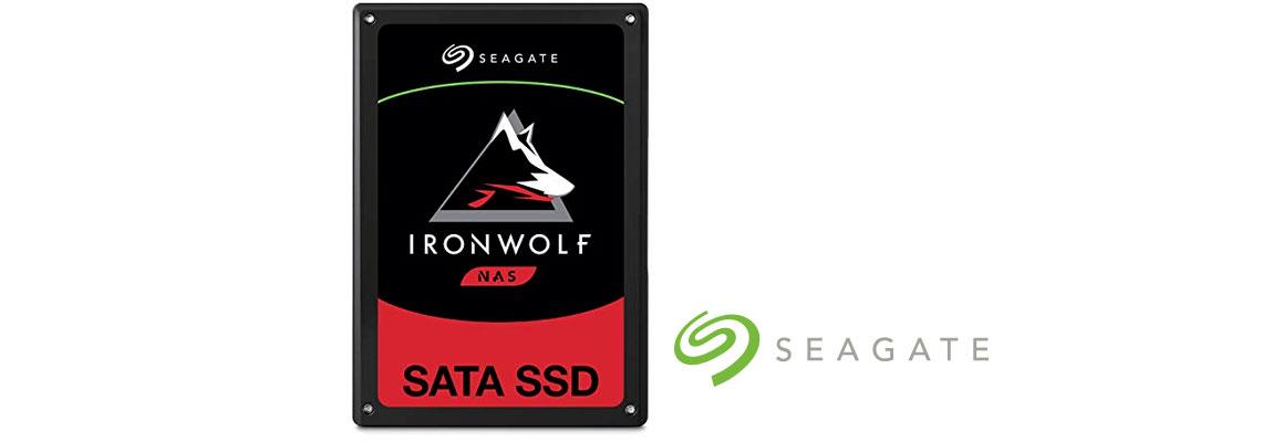 SSD IronWolf 110 Seagate