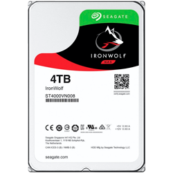 HD IronWolf 4TB ST4000VN008
