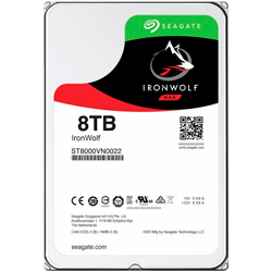 HD IronWolf 8TB ST8000VN0022