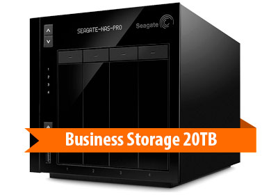Business Storage STDE20000100 Seagate